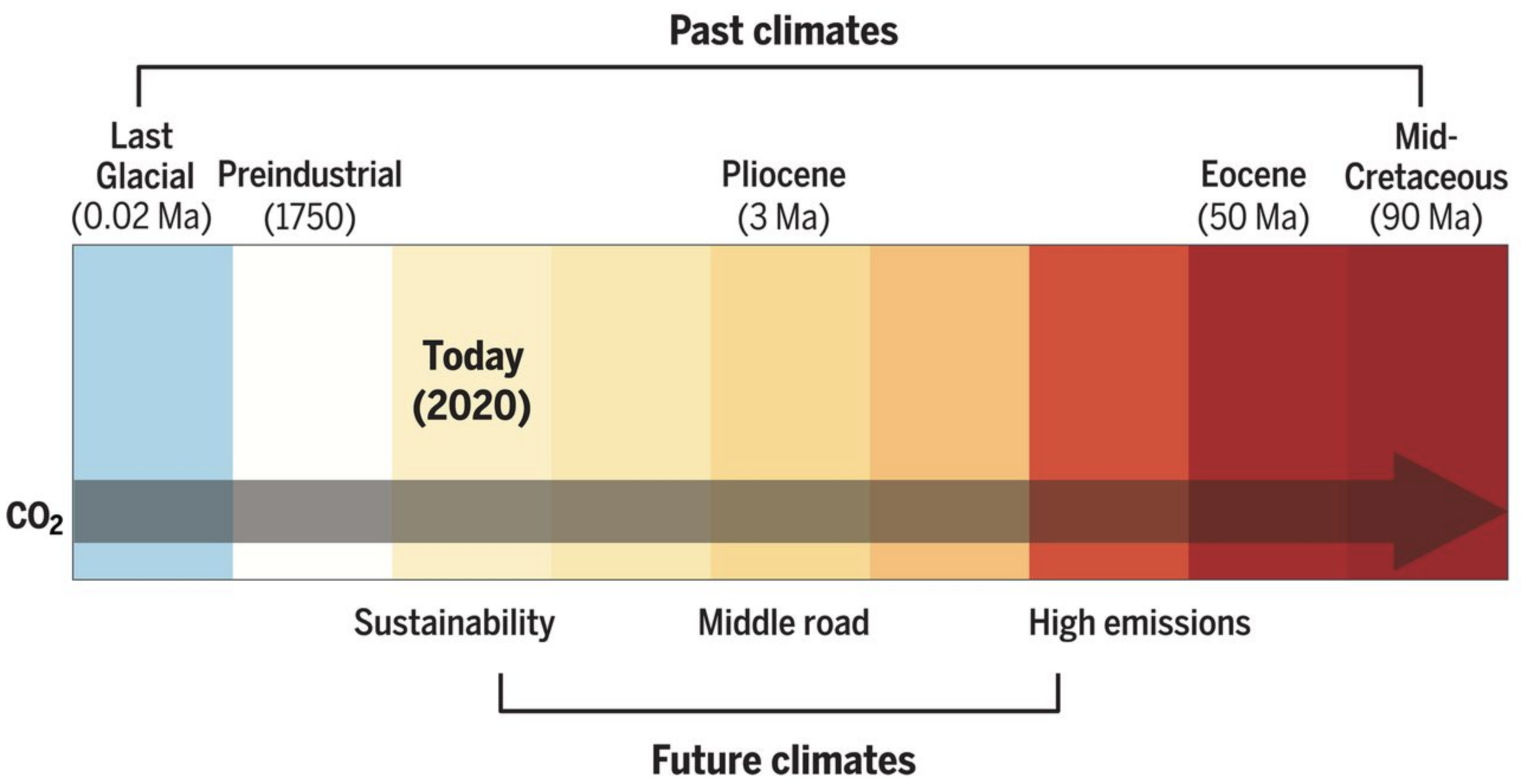 Relationship between past and future temperature